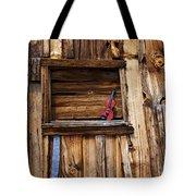 Viola In Window Tote Bag by Garry Gay