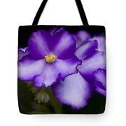 Violet Dreams Tote Bag by William Jobes