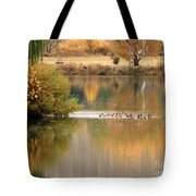 Warm Autumn River Tote Bag by Carol Groenen