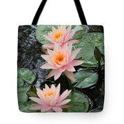 Water Lily Trio Tote Bag by Sabrina L Ryan