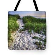 Wellfleet Beach Path Tote Bag by Tammy Wetzel