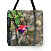 Wheel And Fushia Blossom Tote Bag by Douglas Barnett