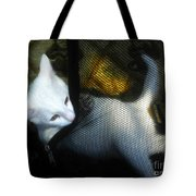 White Kitten Tote Bag by David Lee Thompson