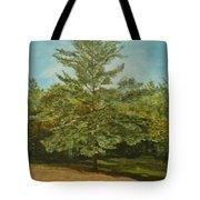 White Lake Tote Bag by Leah  Tomaino