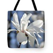 White Magnolia  Tote Bag by Elena Elisseeva