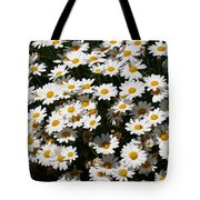 White Summer Daisies Tote Bag by Christine Till