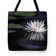 White Water Lily Tote Bag by Sabrina L Ryan