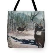 Whitetail Deer Tote Bag by Ben Kiger