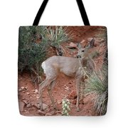 Wild And Pretty - Garden Of The Gods Colorado Springs Tote Bag by Christine Till