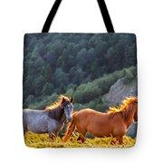 Wild Horses Tote Bag by Evgeni Dinev