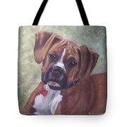 Windsor Tote Bag by Elizabeth Ellis