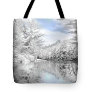 Winter at the Reservoir Tote Bag by Lori Deiter