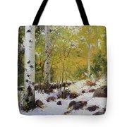 Winter Beauty Sangre De Mountain 2 Tote Bag by Gary Kim
