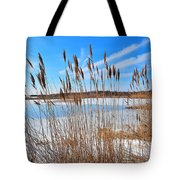 Winter In The Salt Marsh Tote Bag by Catherine Reusch  Daley