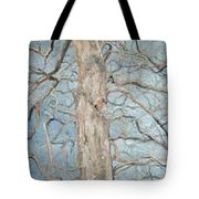 Winter Morning Tote Bag by Leah  Tomaino