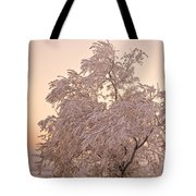 Winter Sunset Tote Bag by Marilyn Hunt