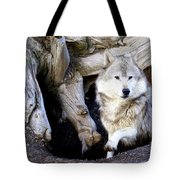 Wolf Den 1 Tote Bag by Marty Koch