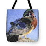 Wood Duck Tote Bag by Lynn Quinn