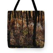 Woods - 2 Tote Bag by Linda Knorr Shafer