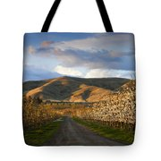 Yakima Valley Spring Tote Bag by Mike  Dawson