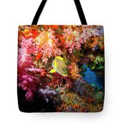 Yellow Banded Sweetlip Fish And Coral Tote Bag by Beverly Factor