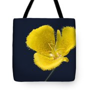 Yellow Star Tulip - Calochortus Monophyllus Tote Bag by Christine Till