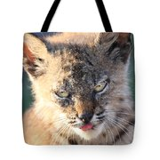 Young Bobcat 04 Tote Bag by Wingsdomain Art and Photography