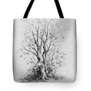Young Tree Tote Bag by Rachel Christine Nowicki