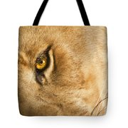 Your Lion Eye Tote Bag by Carolyn Marshall