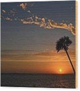 0502 Palms With Sunrise Colors On Santa Rosa Sound Wood Print by Jeff at JSJ Photography