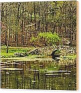 Arkansas Tranquility Wood Print by Benjamin Yeager