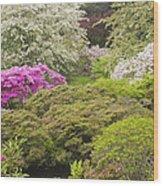 Asticou Azelea Garden - Northeast Harbor - Mount Desert Island - Maine Wood Print by Keith Webber Jr