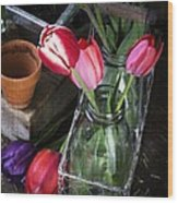 Beautiful Spring Tulips Wood Print by Edward Fielding