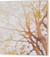 Beneath A Tree  14 5284  Diptych  Set 1 Of 2 Wood Print by Ulrich Schade