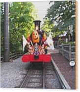 Busch Gardens - 121213 Wood Print by DC Photographer