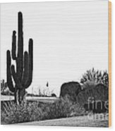 Cactus Golf Wood Print by Scott Pellegrin