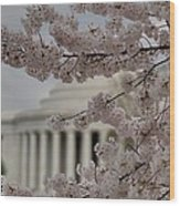 Cherry Blossoms With Jefferson Memorial - Washington Dc - 01134 Wood Print by DC Photographer