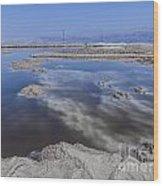 Dead Sea Landscape Wood Print by Dan Yeger