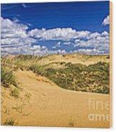 Desert Landscape In Manitoba Wood Print by Elena Elisseeva