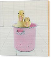 Duck Soup  Wood Print by Amy Tyler