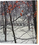 Early Snow Wood Print by Bob Phillips