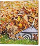 Fall Leaves With Rake Wood Print by Elena Elisseeva