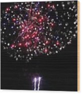 Freedom Blooms Wood Print by Andrew  Stoffel