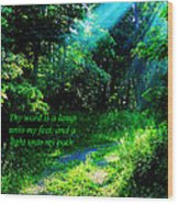 Light Unto My Path Wood Print by Thomas R Fletcher