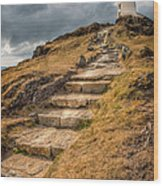 Lighthouse Steps Wood Print by Adrian Evans