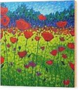 Poppy Field Wood Print by John  Nolan