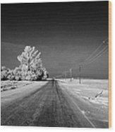 salt and grit covered rural small road in Forget Saskatchewan Canada Wood Print by Joe Fox