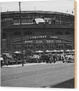 White Sox Home Comiskey Park Wood Print by Retro Images Archive