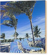 Windy Day At The Beach Wood Print by Susan Stone
