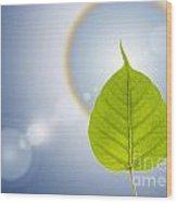Pho Or Bodhi Wood Print by Atiketta Sangasaeng
